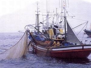 nave-da-pesca