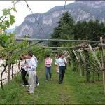 Sibari: una breve riflessione sul complesso sistema agricolo del responsabile per l'agricoltura