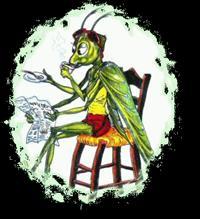 la cicala