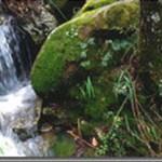 Escursione al Vallone San giorgio ed Acqua Ammucciata  – Domenica 11 maggio 2014