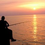 Allevamento di pesci e molluschi un settore espansione tranne in europa