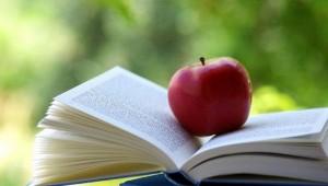 Libro, cibo per la mente