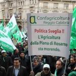 AGRINSIEME: manifestazione di protesta numerosa la presenza di agricoltori reggini