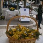 A.N.A.S. Roccapalumba: In occasione dell'8 marzo  ha donato alle donne una Mimosa