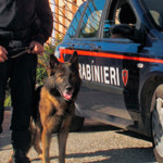 SCICLI (RG): Controlli antidroga dei Carabinieri della Compagnia di Modica