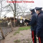 VITTORIA (RG): Carabinieri servizio straordinario di contrasto al pascolo abusivo