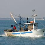 ANAS: Pescatori pugliesi fermati in Albania, interrogazione deputati Forza Italia: Chiediamo al Ministro di intervenire subito