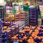 VITTORIA (RG): Presentato lo schema del Regolamento comunale per il mercato