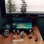 CATANIA: Meccanico coltiva droga in casa e la vende in officina