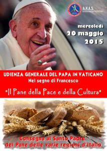 Locandina Udienza Papa
