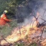 VITTORIA (RG):  Firmata ordinanza prevenzione incendi