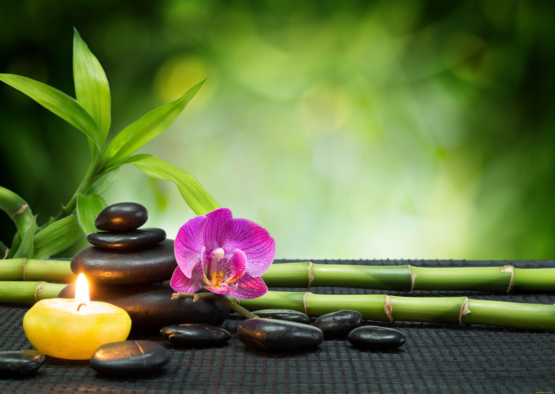Feng Shui Regole Ufficio : Feng shui è vero che il benessere è scritto nella casa a n a s