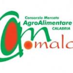 CATANZARO:ENRICO CONSOLANTE NUOVO RAPPRESENTANTE DEL COMUNE NEL CDA DEL COMALCA