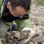 Sabato 27 Giugno corso di aggiornamento professionale per geologi presso la sala Consiliare del comune di Termini Imerese