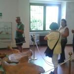 Visita A.N.A.S. all'elefante del Museo Paleontologico e Naturalistico di Rotonda (Pz)