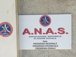 anas 7
