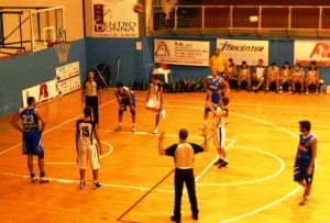 cocuzza basket