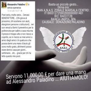 donazione paladino Alessandro