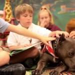 A.N.A.S. cerca tre volontari che amino i cani e i bambini