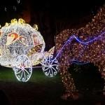 Grande successo per la gita natalizia a Napoli e Salerno organizzata da A.N.A.S. zonale provinciale Cosenza