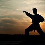A.N.A.S. consiglia il 12° Campionato del mondo di karate per clubs