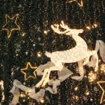 "A.N.A.S. zonale Bovalino presenta ""Bentornato Natale"""