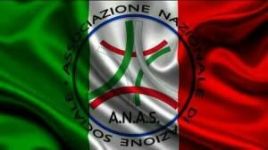 bandiera anas italia