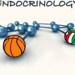 L'endocrinologia dell'esercizio fisico