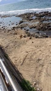 spiagge pulite 1