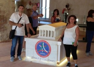 Anas museo imera