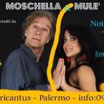 NOI diviso DUE di Giuseppe Moschella
