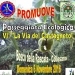 6 novembre anas Collesano organizza la VI* edizione della via delle Castagne