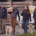 I cani e i gatti in attesa di famiglia dei rifugi ENPA della regione Sicilia hanno ricevuto un concreto aiuto grazie alla campagna di food raising sostenuta da FRISKIES che ha raccolto un milione di pasti per i rifugi ENPA di tutta Italia.