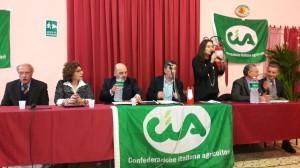 da sinistra Cossentino, Giuffrida, Scanavino, Maggio, Castagna, Cimò e Lunetta