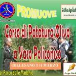 ANAS Collesano: corso di potatura olivo a vaso Policonico Collesano 3 – 4 marzo 201
