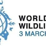 3 marzo, Giornata internazionale della natura: 9 associazioni presentano la loro Carta di Roma per il recupero degli animali salvati non a fini di lucro