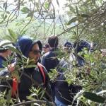 CORSO DI POTATURA DELL ' ULIVO A VASO POLICONICO COLLESSANO 3 e 4 MARZO 2017