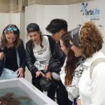 Riparte l'Aula sul mare: un progetto di educazione ambientale e velica