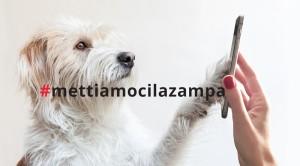 concorso-mettiamoci-la-zampa-primopremio-net_