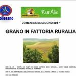RurAlia il prossimo 25 giugno con ANAS Collesano
