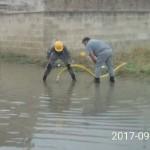Taranto: Volontari dell'Associazione Angeli dei Quartieri affiliata ANAS a lavoro