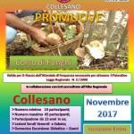 Collesano (PA): anche quest'anno l'Anas organizza il corso per la raccolta dei funghi. Le iscrizioni entro il 31 ottobre