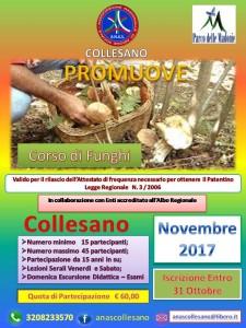 anas-collesano-raccolta-funghi