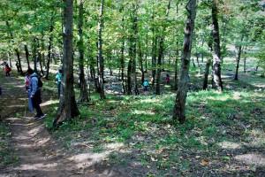 bosco-rascata