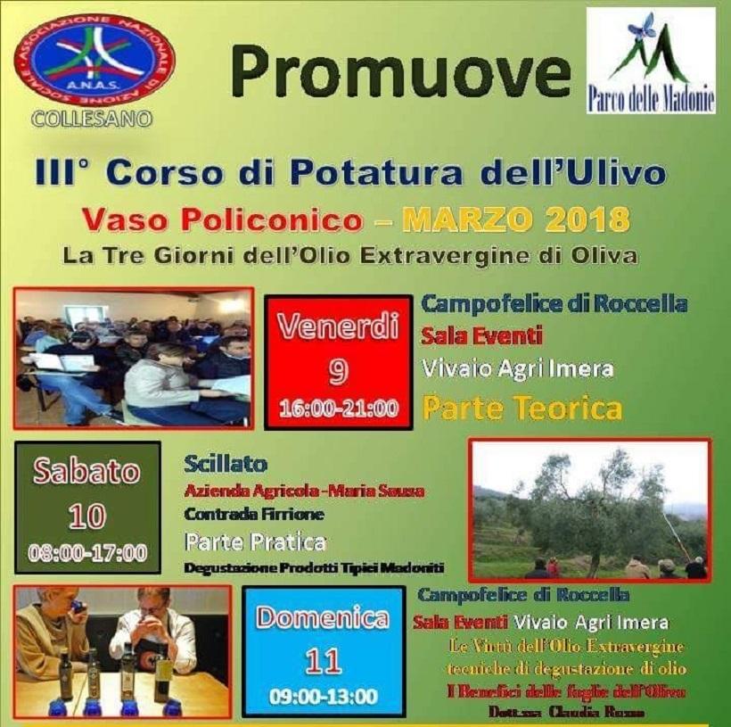 ANAS PA: Corso di Potatura dell'Olivo con sistema semplificato a Vaso Polifonico, tre giorni dell'Olio extravergine di oliva