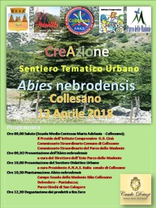 anas-collesano-sentiero-abies