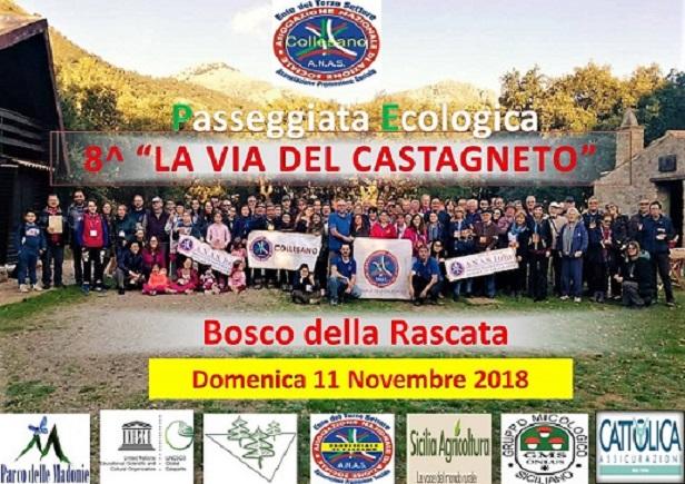 La Vai del Castagneto con ANAS Collesano alla sua 8° edizione tra natura e cultura